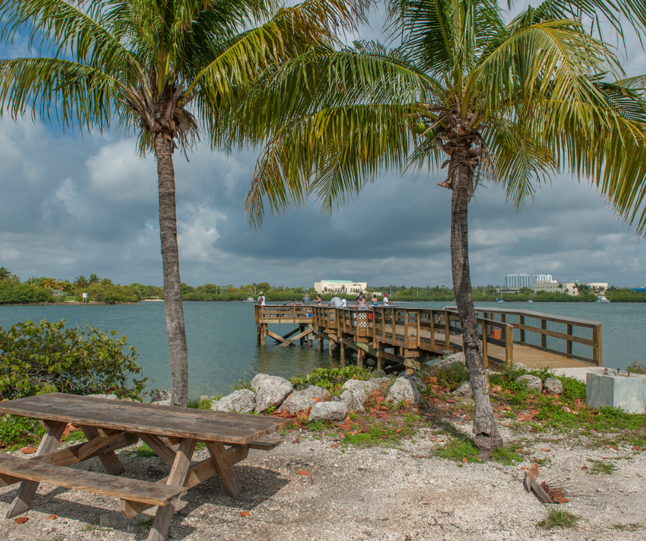 North Miami Beach- Oleta River State Park (2)